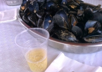 Mussels and cava